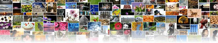 pixabay_images-382006_1280_header_border